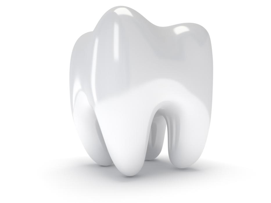 Root Canals in Royal Oak MI